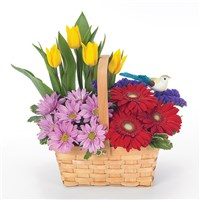 Happy birthday garden flower bouquet (BF9-11K)